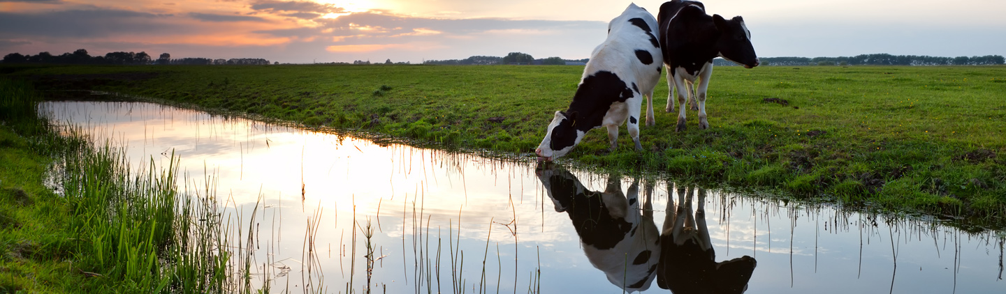 Agricultural Law |  Registered land titles | What happens if the course of a riverchanges