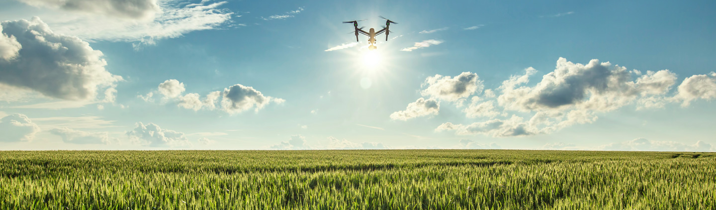 Are birds trained to attack drones? | Agricultural Law