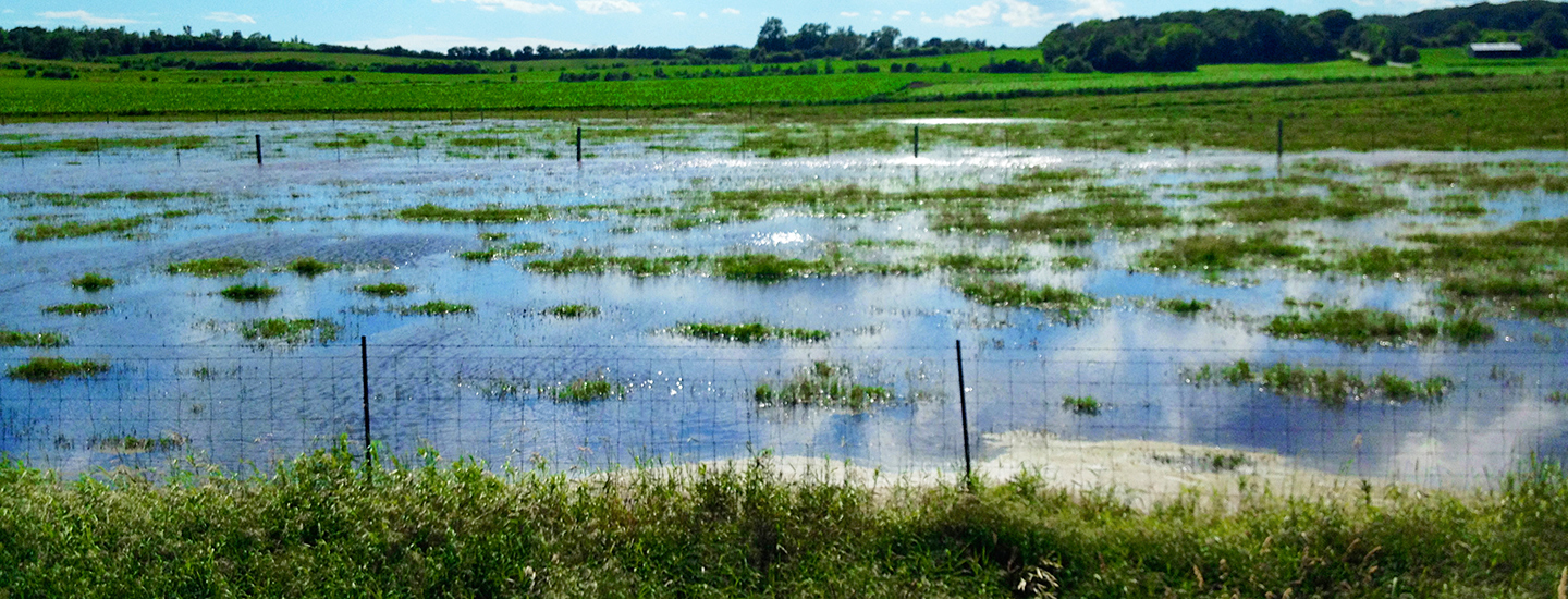 Environment Agency | Flooding | Agricultural Law