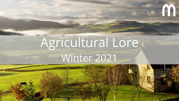 Michelmores' Agricultural Lore publication for winter 2021