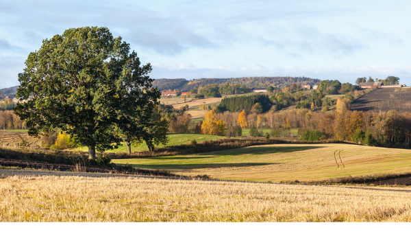 Generic image showing views of the countryside