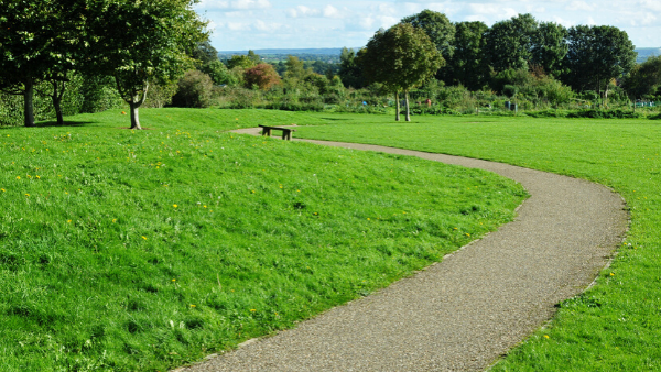 A path winding through a park