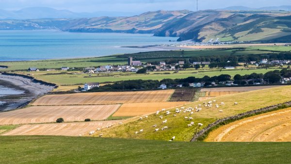 Agriculture Act 2020: The direction of the Welsh agriculture policy