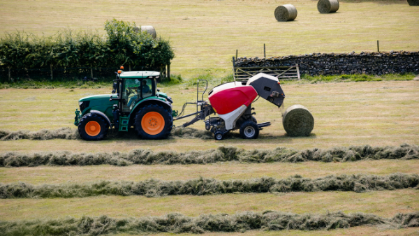 How working farms could be affected by the Agriculture Act 2020