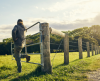How to Structure a Farm Business